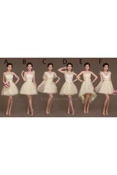 A-Line Short Tulle Bridesmaid Dresses/Evening Dresses BD010621