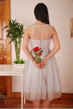 A-Line Short Grey Tulle Bridesmaid Dresses/Wedding Party Dresses BD010692