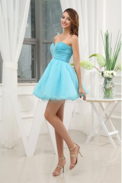 Ball Gown Beading Sleeveless Organza Prom/Formal Evening Dresses 02021041
