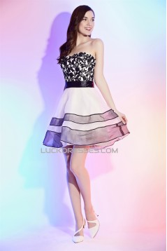 A-Line Sleeveless Short/Mini Cocktail Homecoming Evening Dresses 02021273
